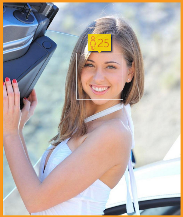 海外ポルノ女優の年齢を調べてみた how-old.net 14