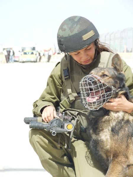 軍犬と訓練をするイスラエル軍の女性兵士