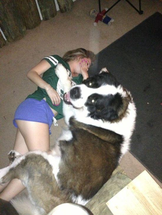 女の子の寝込みを襲う犬